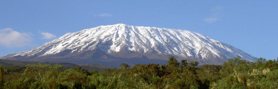 Kilimanjaro Essence